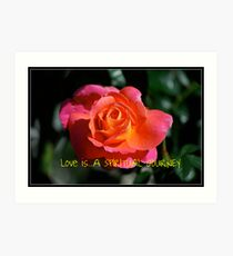Calendar Rose - June Art Print