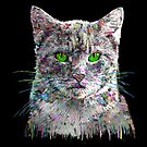 Graffiti covered cat by rlnielsen4