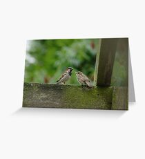 Sparrow Family Greeting Card