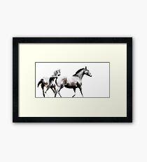 High Tackle - Thoroughbred Horses 3/3 Framed Print
