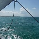 Sailing to Paradise island by abryant