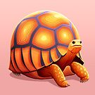 Ploughshare Tortoise by Tami Wicinas
