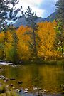 Bishop CA. North Fork Bishop Creek Fall by photosbyflood