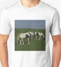 Shire Horses T-Shirt