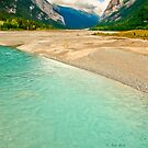 Kicking Horse River by Carolann23