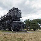 Steam locomotive on display by Josef Pittner