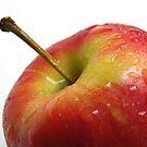 Apple (2) by Gloria Abbey