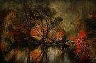Pond by Elaine Manley