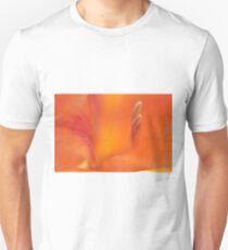Orange Gladiolus, As Is T-Shirt