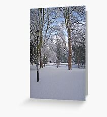 Tranquil snow scene Greeting Card