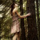 Forest Light by Nikki Smith