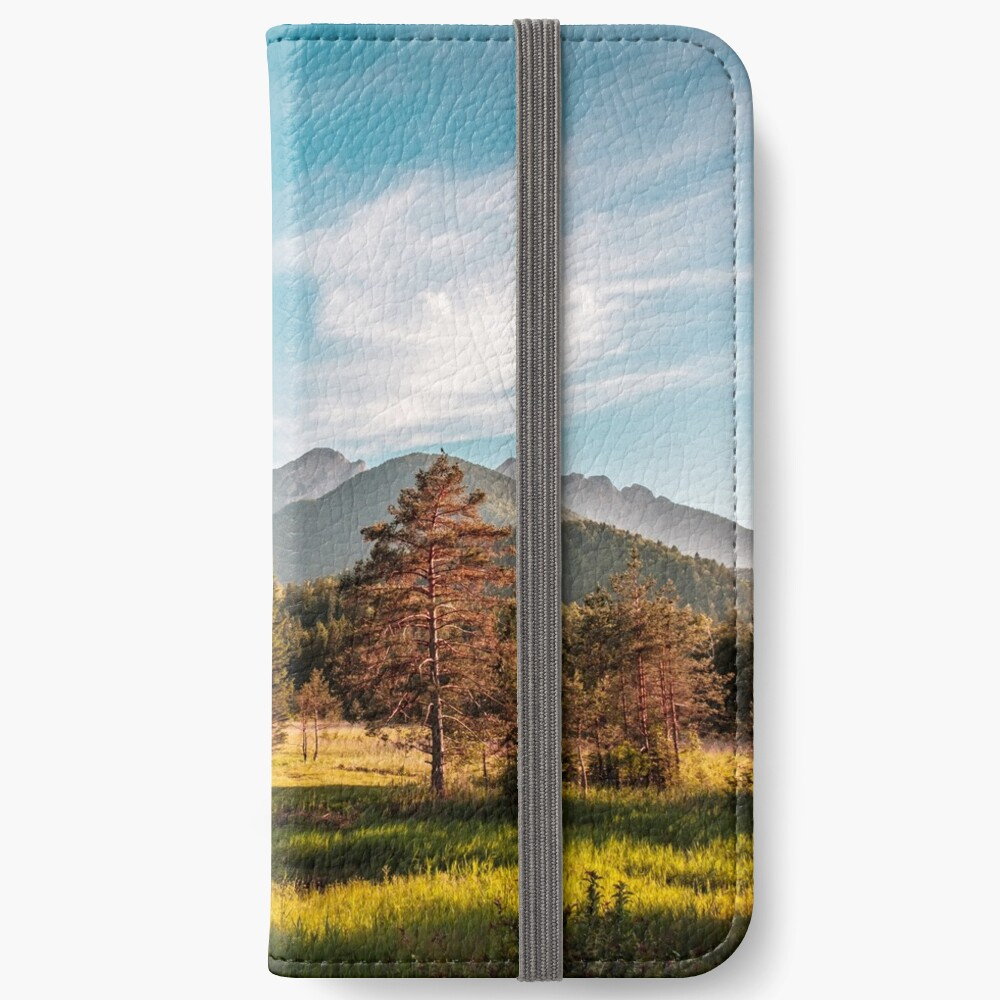 Summer has arrived in the italian alps iPhone Wallet