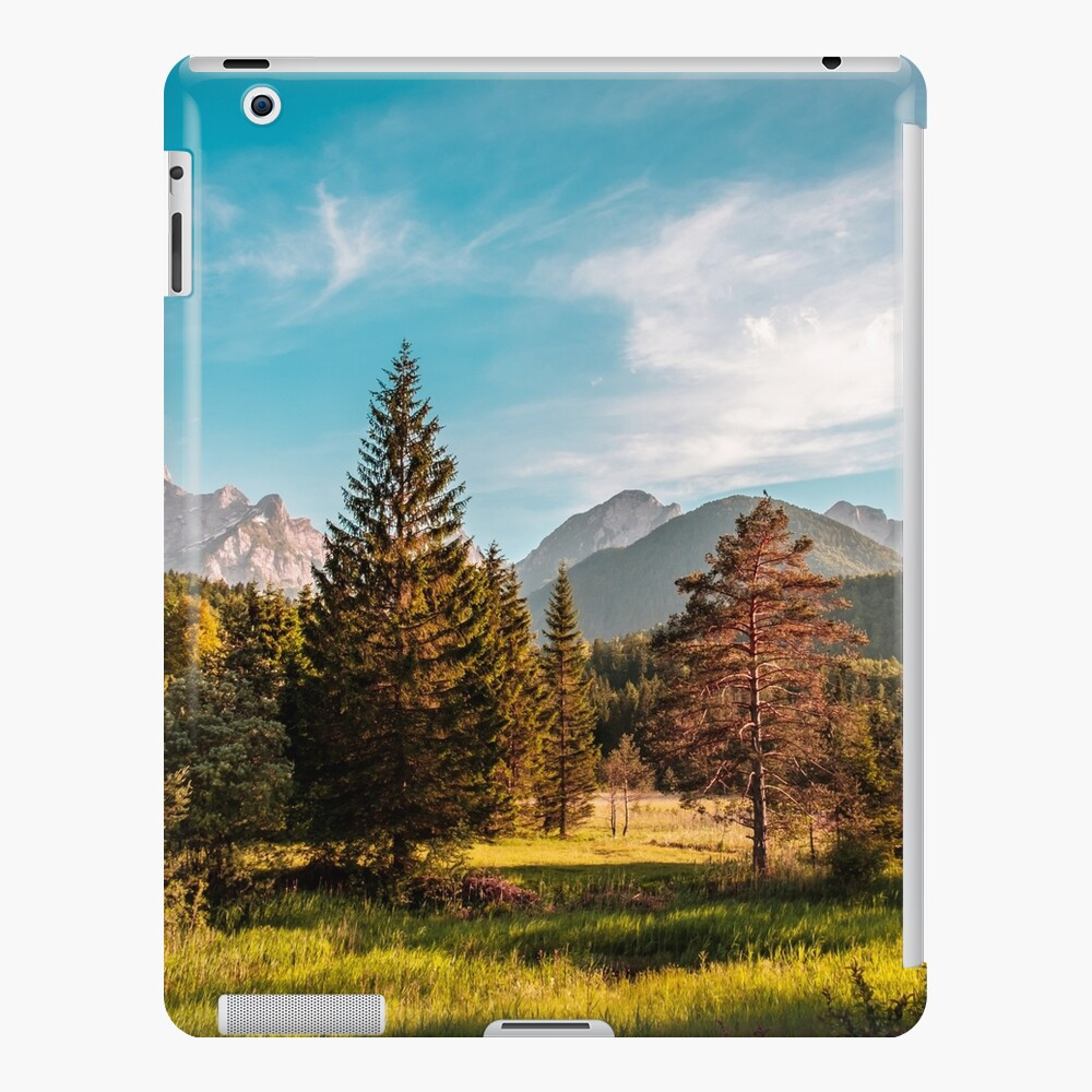 Summer has arrived in the italian alps iPad Case & Skin
