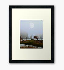 The Menagerie Framed Print