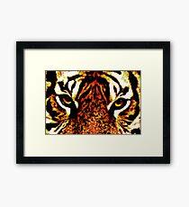 Eye of the Tiger 3 Framed Print