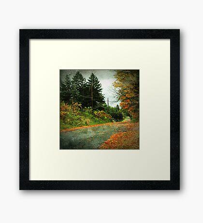 The Fallen (Leaves) Framed Print