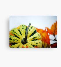 Gourd Canvas Print