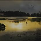 Golden marshlands by Judi Taylor