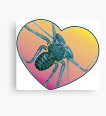 Amblypygi love - Phrynus whitei Canvas Print