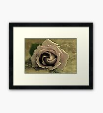 """Enchanted....."" Framed Print"