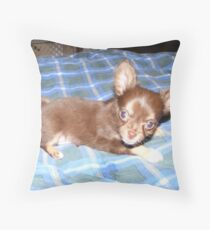 Adorable Throw Pillow