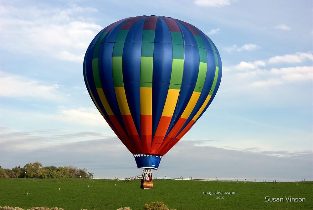 Flyin' Low by Susan Vinson