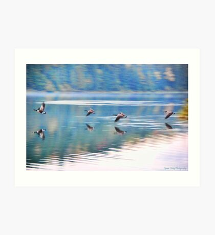 Geese Over the River Art Print