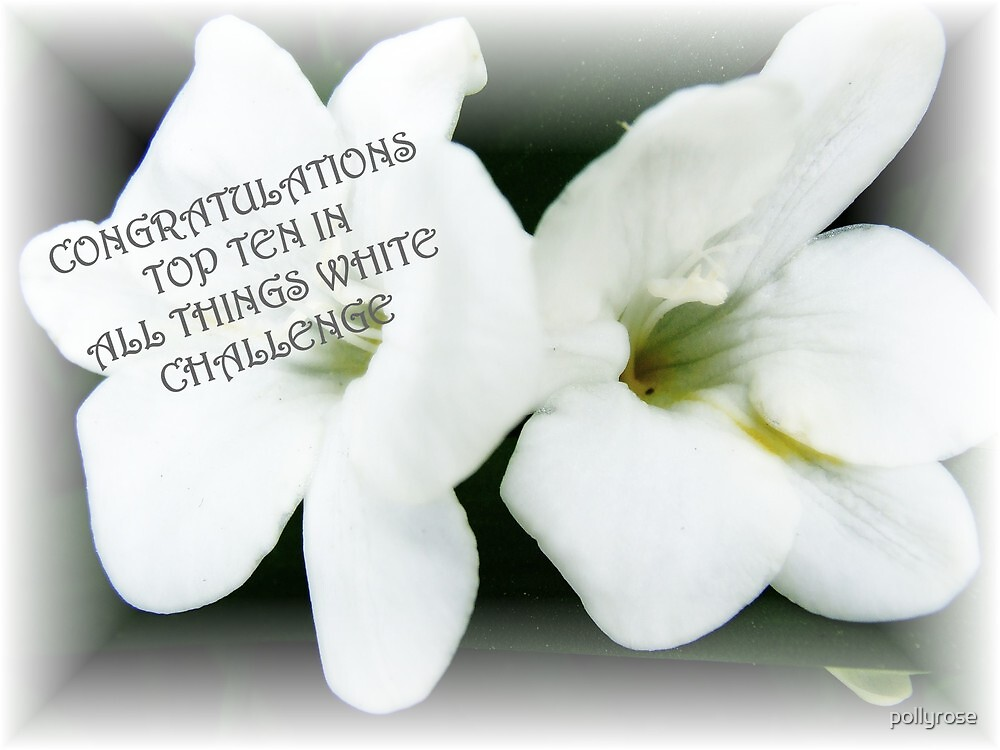 TOP 10 IN ALL THINGS WHITE CHALLENGE BANNER ENTRY by pollyrose