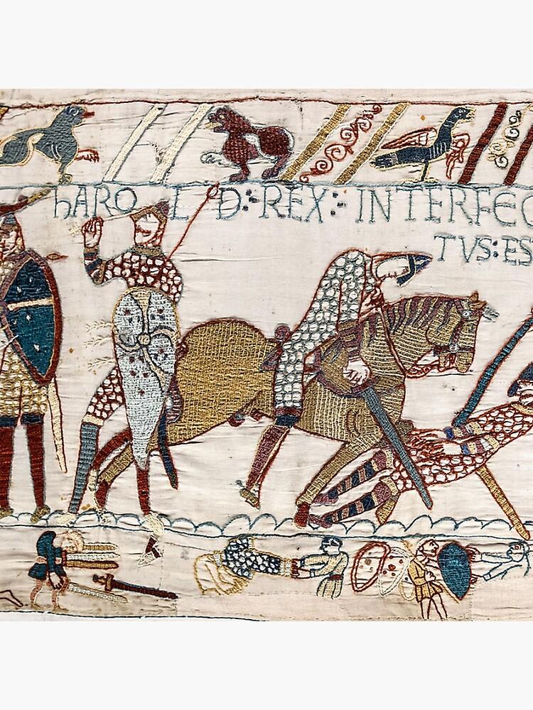 Bayeux-Tapisserie, König Harold wird getötet. Pfeil im Auge. von TOMSREDBUBBLE