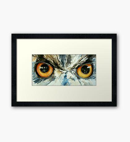 Owl's eye view Framed Print