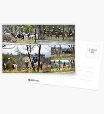 Weddin Muster 2010 No. 2 Postcards