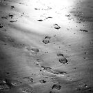 Footprints in the Sand by David Chadderton