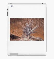 Infrared Landscape iPad Case/Skin