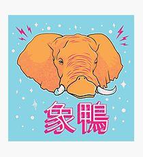 Elephant Duck Kanji Photographic Print