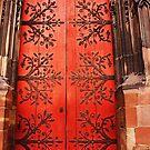 Strasburg, France Church Doors by Darlene Virgin