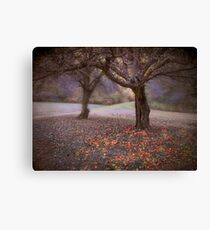 fallen fruit Canvas Print