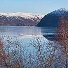Frozen Loch Luichart by Panalot