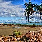 Cape Hillsborough Coast by Roboftheland