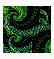 Abstract 148M Fractal Photographic Print