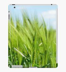 barley iPad Case/Skin