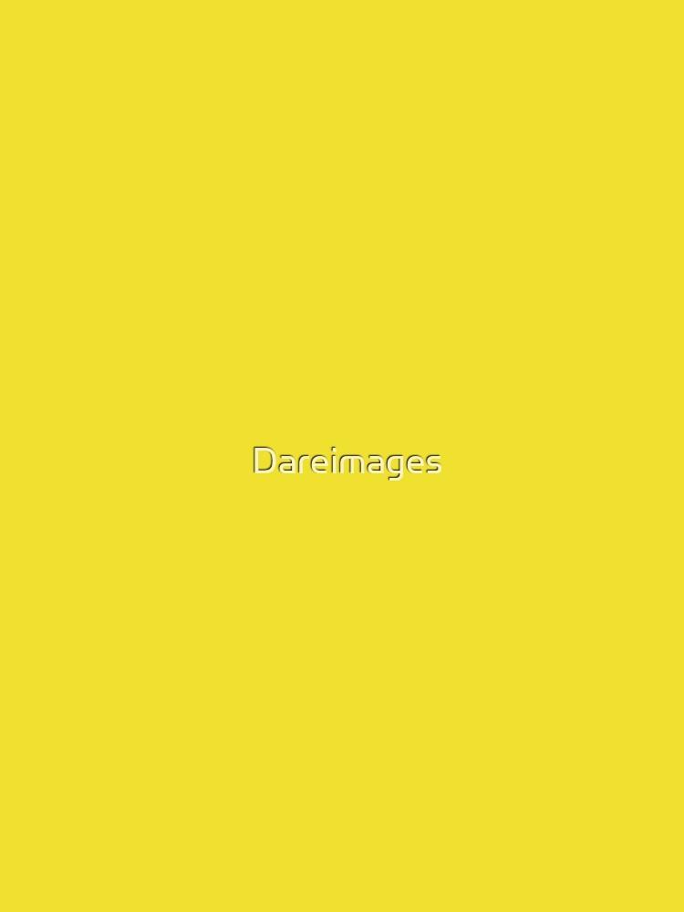 Löwenzahn gelb von Dareimages