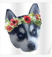 Flower Crown Husky Dog Poster