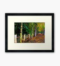 Badmergentheim Germany,After the Rain Framed Print