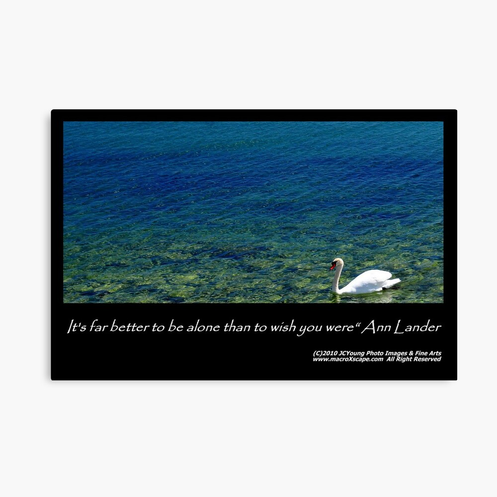 It's far better to be alone... Canvas Print