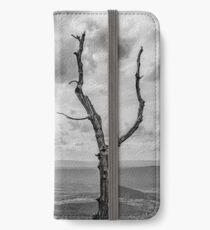 Skyline iPhone Wallet/Case/Skin