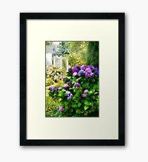 Flower - Lovely Hydrangea  Framed Print