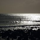 Stand up and paddle..... Burleigh by BK Photography