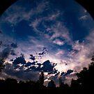 Fish-Eye Sky Illumination by lillijy97
