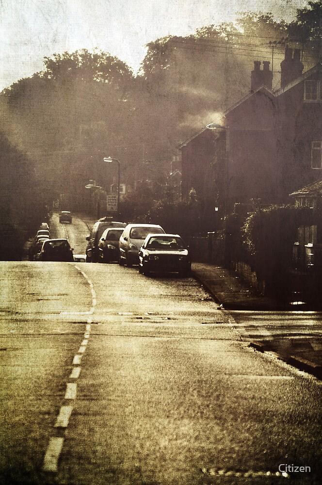 The Street by Nikki Smith (Brown)