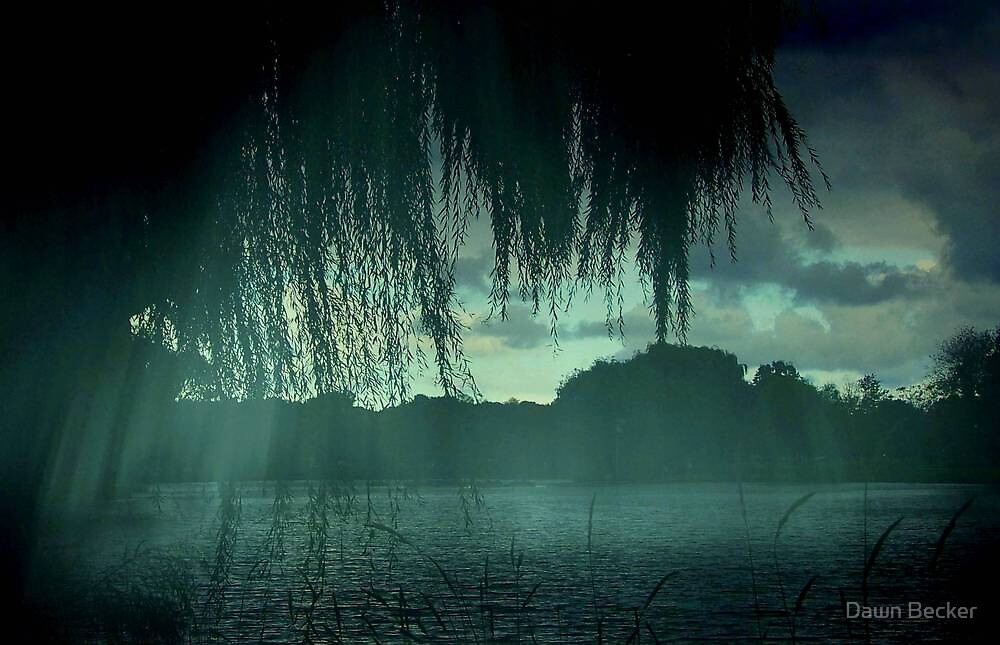 Misty Rain ©  by Dawn Becker